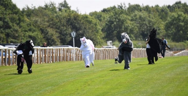 Catterick Racecourse Supports...
